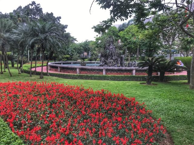 flowers .jpg