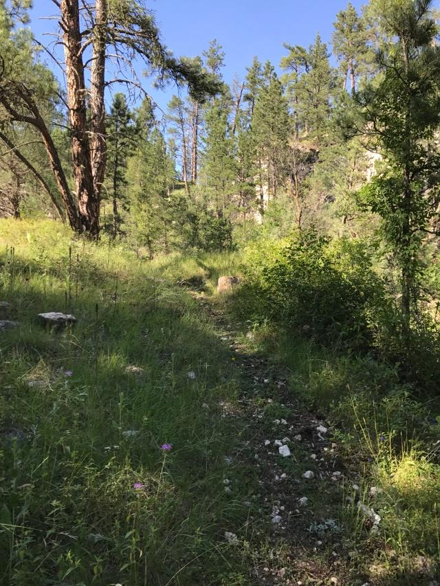 bh trails